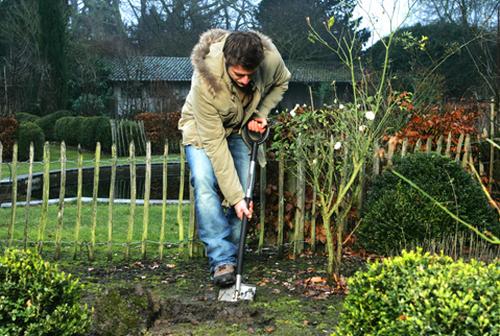 можно ли березовую листву перекапывать весной с землёй цены, прямые