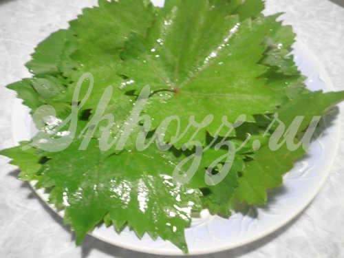 vinogradnye-listya-dlya-dolmy